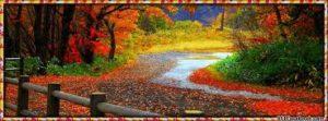 autumn-banner-2